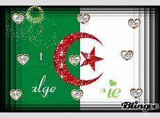 123 viva l'algerie Picture #107744176 Blingeecom