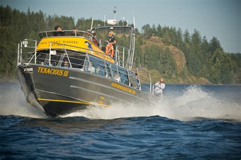 water taxitour vessel eaglecraft aluminum boats