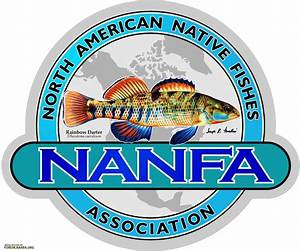 North American Native Fishes Association