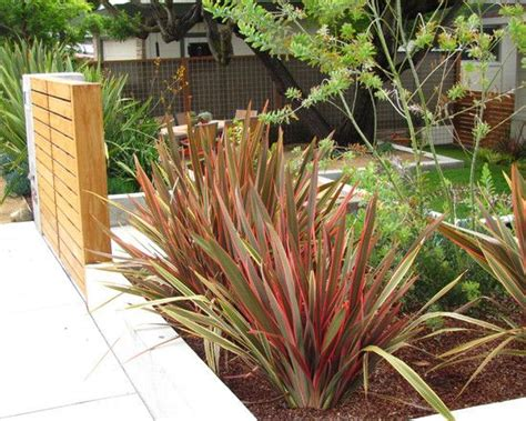 patio border plants wood patio with border plants good pr design pictures remodel decor and ideas page 8 for