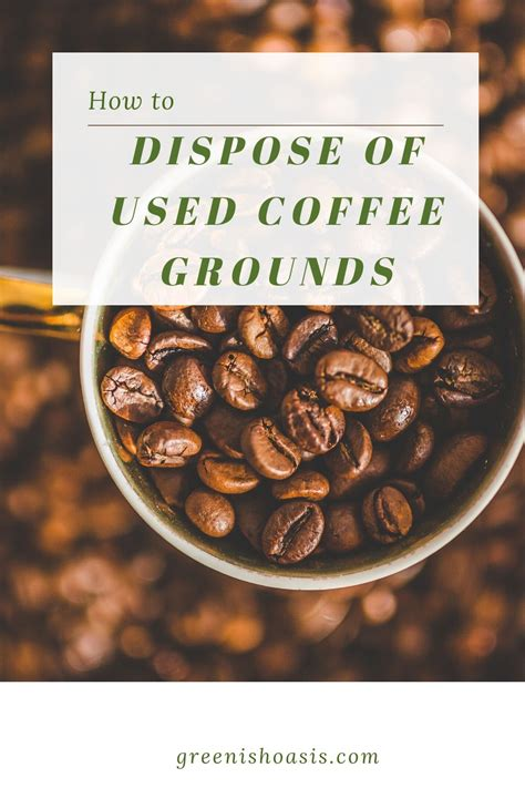 Discover how to responsibly dispose of your coffee grounds. How to dispose of used coffee grounds | Uses for coffee grounds, Coffee grounds, Green lifestyle