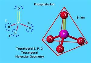 Phosphates  Uses  Function  Dangers