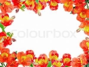 Orange Flowers Border | www.pixshark.com - Images ...