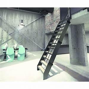 Echelle Pour Escalier : echelle de meunier bois et acier pour petits espaces ~ Melissatoandfro.com Idées de Décoration