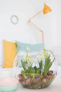 Blumenzwiebeln Im Glas : blumenzwiebeln im glas diy muttertagsgeschenke daumenkino und blumenzwiebeln im glas handmade ~ Markanthonyermac.com Haus und Dekorationen