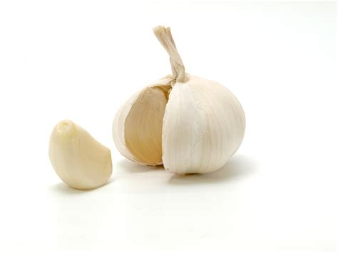 clove of garlic file opened garlic bulb with garlic clove jpg