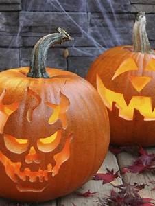 Modern, Furniture, Halloween, 2012, Traditional, Pumpkin, Carving, Ideas, From, Hgtv