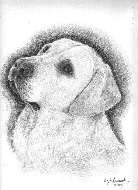 disegni facili a matita disegno disegno libero con disegni a matita facili da