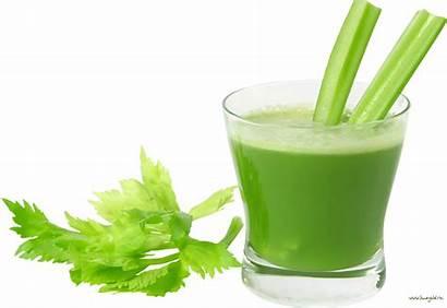 Juice Clipart Druid Belcher Prep 2x Delivery