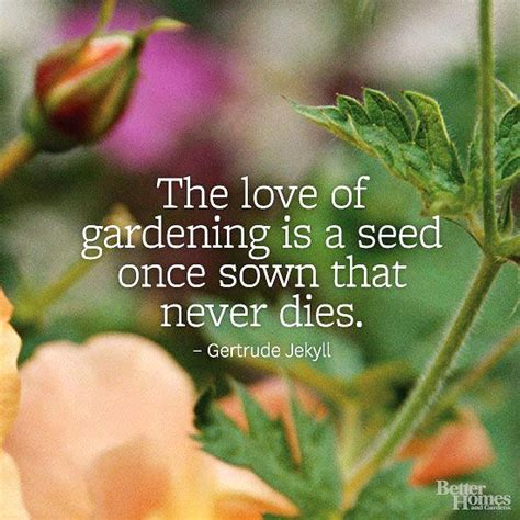 garden quotes garden quotes gardens quotes about life and in the garden