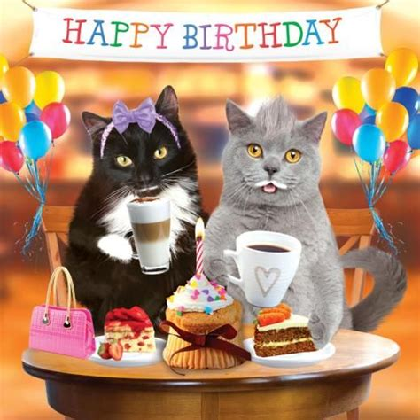 image result  happy birthday cats cards happy