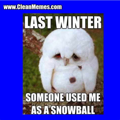 Funny Winter Memes - funny winter memes 100 images clean funny images clean memes the best the most online page