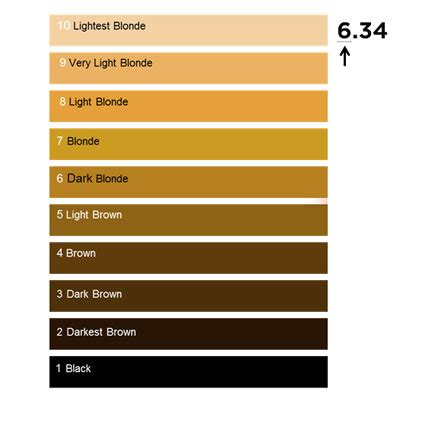 hair colour numbering system loreal professionnel