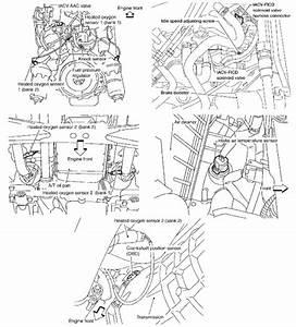 Bestseller  2003 Nissan Frontier Engine Diagram