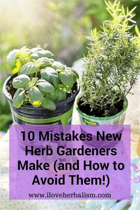 herb pots ideas  pinterest diy herb garden