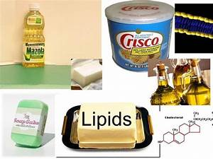 Examples of lipids are waxes, oils, and fats ...