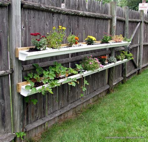 maintenance container gardens  beginners hometalk