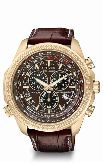 Citizen Mens Eco Drive Gold Watches Rose