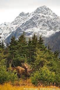 Alaska Chugach State Park