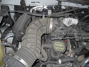 Ford 3 8 V6 Engine Diagram 1996 Thunderbird 2003 Mustang