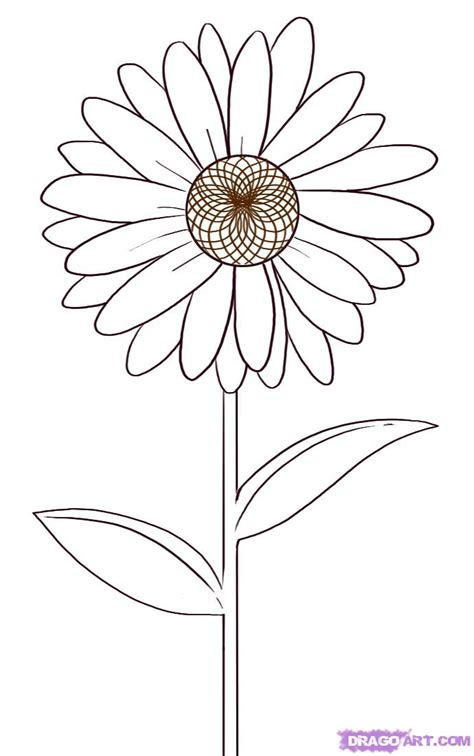 draw  daisy step  step flowers pop culture