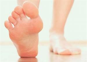 Diagram Of Sweat Glands Foot