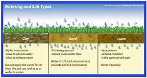 Lawn Irrigation Tips for Arizona   AZ Sprinkler Blog