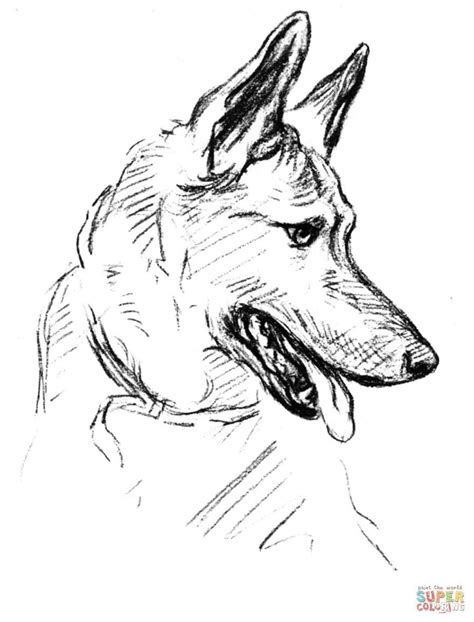 baby german shepherd coloring pages › mrengmeng.link in 2019 | Dog coloring page, German