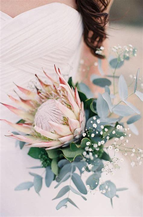 25 Best Ideas About Protea Bouquet On Pinterest Protea