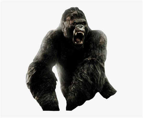 His first appearance in a toho film was the 1962 godzilla film, king kong vs. king kong png 10 free Cliparts | Download images on ...