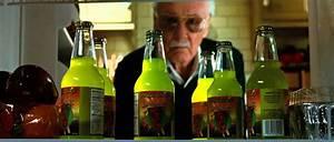 All of Stan Lee's Marvel Cameos So Far: Iron Man Through ...