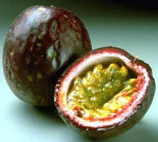 Zielona Chata: Męczennica Passiflora - marakuja