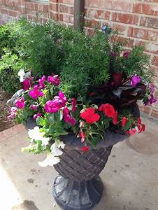 17 Best Images About Front Steps On Pinterest Gardens