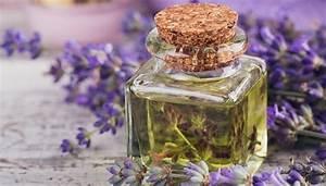 Lavendelöl Selber Machen : massage l selber machen rezepte zum entspannen und erfrischen ~ Markanthonyermac.com Haus und Dekorationen