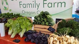 Seedy Saturday Seed & Plant Swap! - Oregon City Farmers Market