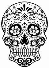 Skull Colouring Sugar Coloring Dead sketch template