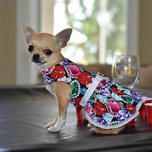Dog Clothes Princess Kiwi Dress Chihuahua Yorkie