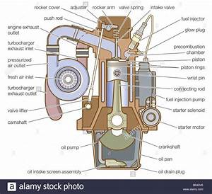Diesel Engine Equipped With A Precombustion Chamber Stock