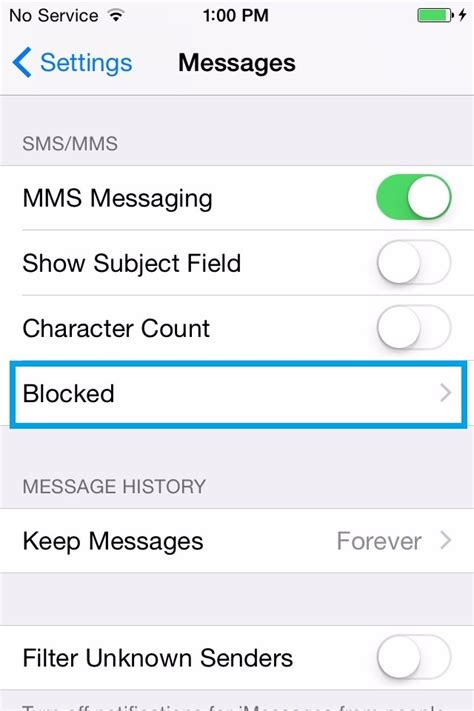 can t send messages on iphone can t send messages on iphone 6s thecellguide
