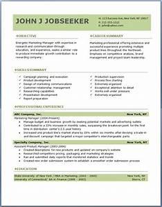 eco executive level resume template creative resume With executive level resume template