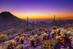 5 Reasons To Honeymoon In Scottsdale, Arizona Weddingbells