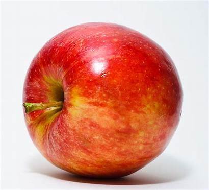 Apple Apples Fruit Wikipedia Wiki Fruits Manzana