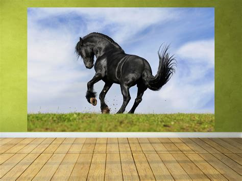 Wand Poster Selbstklebend by Poster Fototapete Selbstklebend Tiere Pferd Black