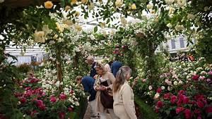 Chelsea Flower Show 2018 : chelsea flower show 2018 financial times ~ Frokenaadalensverden.com Haus und Dekorationen