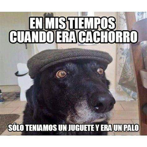 Memes Divertidos - videoswatsapp com imagenes chistosas videos graciosos memes risas gifs chistes divertidas humor