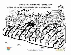 Farm To Table Lesson Plans