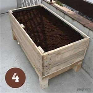 Rhizomsperre Selber Bauen : die besten 10 sichtschutz pflanzen ideen auf pinterest sichtschutz sichtschutz ideen und ~ Watch28wear.com Haus und Dekorationen