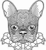 Coloring Pages Dog Pug Adults Comments sketch template