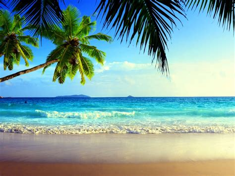 Beach Sea View  Summer  One Hd Wallpaper Pictures
