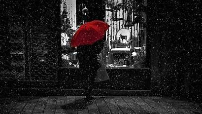 Rain Umbrella Night Bw Walk Background Loneliness